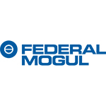 Federal Mogul Powertrain